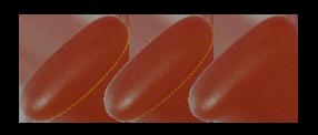 小分子魚油顆粒