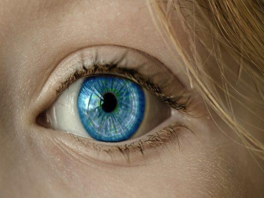 視力 保護