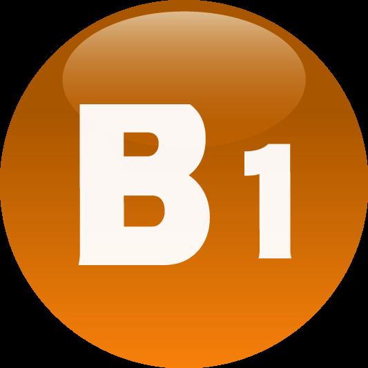 icon B1